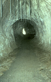 Thuston lava tube Hawaii USGS